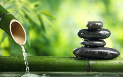 Дзен: медитация в буддизме